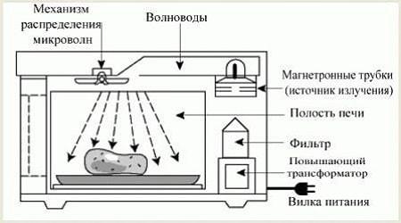 Le principe de fonctionnement du four à micro-ondes
